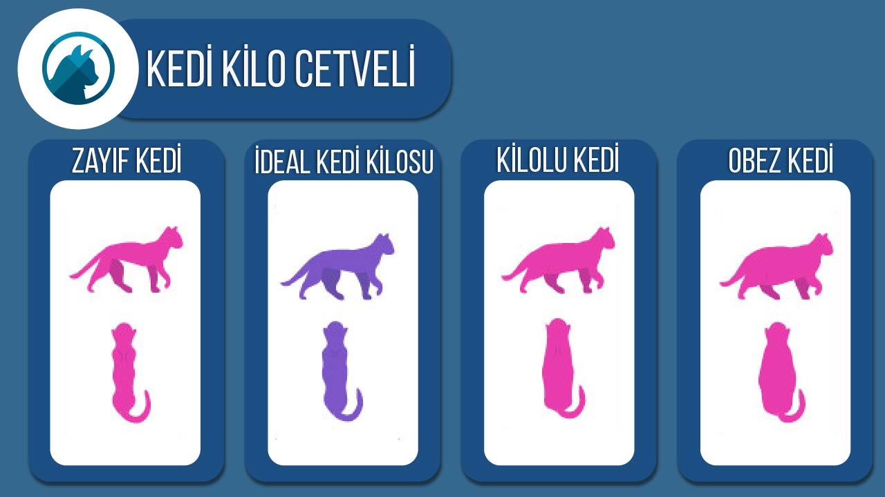 kedi-kilo-cetveli
