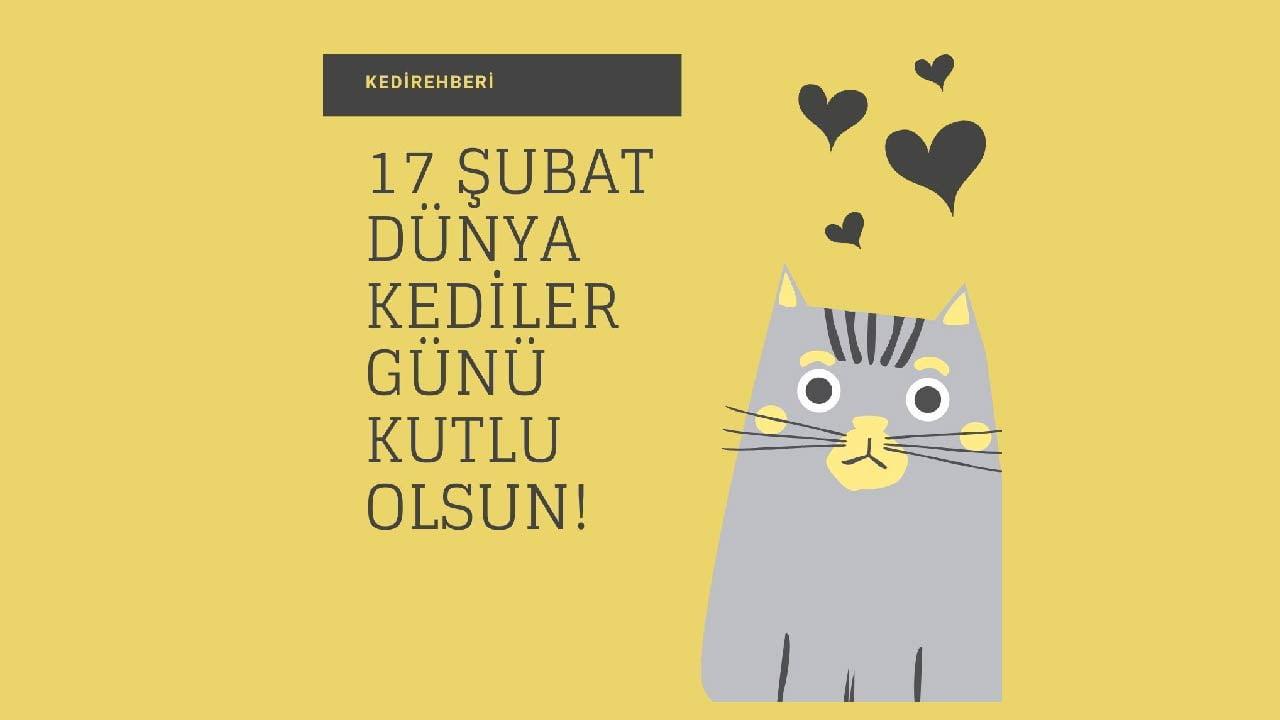 17-subat-dunya-kediler-gunu