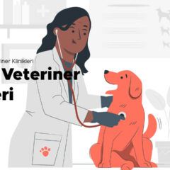 Pendik Veteriner Klinikleri